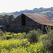 Old Barn In Sonoma California 5d22232 Art Print
