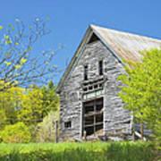 Old Barn In Spring Maine Art Print