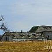 Old Barns In The Heartland Art Print by Alys Caviness-Gober
