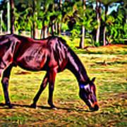 Old Bay Horse Art Print