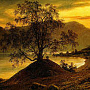 Old Birch Tree At The Sognefjord Art Print
