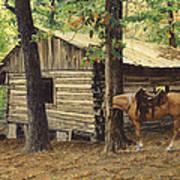 Log Cabin - Back View - At Big Creek Art Print