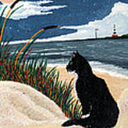 Old Cat And The Sea Art Print