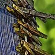 Old Clothes Pins I Art Print