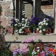 Old Cottage Flowers Art Print