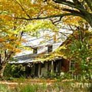Old Farm House Behind Color Art Print