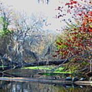 Old Florida Along The Sante Fe River Art Print