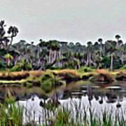 Old Florida Waterway Art Print