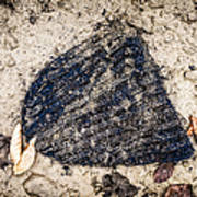 Old Forgotten Wool Cap Lying On The Ground Art Print