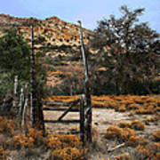 Old Gate At Oak Flats Art Print