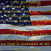 Old Glory Art Print by Robyn Stacey