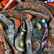 Old Horse Shoes Art Print