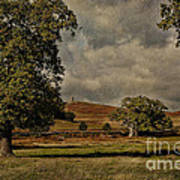 Old John Bradgate Park Leicestershire Art Print by John Edwards