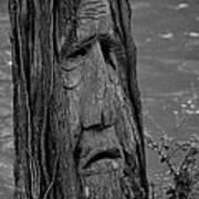 Old Man River Art Print