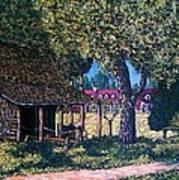 Old Plantation Tool House Art Print
