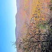 Old Rag Hiking Trail - 121223 Art Print