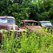 Old Rusty Cars Art Print