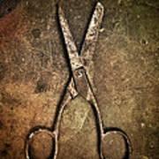 Old Scissors Art Print