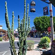 Old Town Cactus Art Print