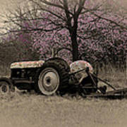 Old Tractor And Redbuds Sepia Art Print