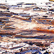 Old Weathered Log On The Sea Shore Art Print