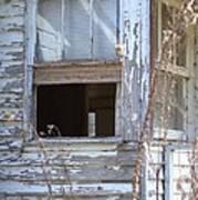 Old Windows Overlooking New World Art Print