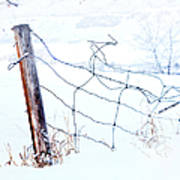 Old Wire Fence Art Print