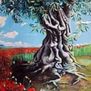 Olive Tree In A Sea Of Poppies Art Print