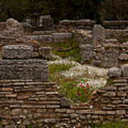 Olympia Ruins And Wild Flowers   #9684 Art Print