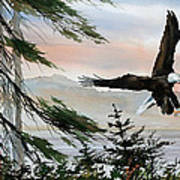 Olympic Coast Eagle Art Print