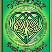 O'malley Soul Of Ireland Art Print