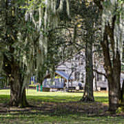 On Destrehan Plantation Art Print