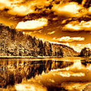 On Golden Pond Art Print by David Patterson