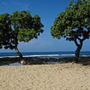 On Hawaii's The Big Island Art Print