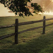 On The Fence Art Print by Bill Wakeley