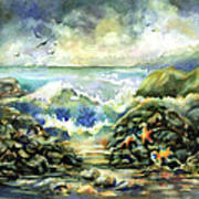 On The Rocks Art Print by Ann  Nicholson
