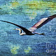 On The Wings Of Blue Art Print