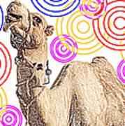 One Funky Camel Art Print