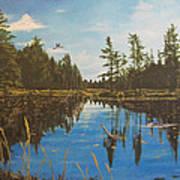 O'neal Lake Art Print