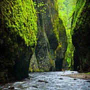 Oneonta River Gorge Art Print