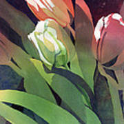 Only Three Tulips Art Print