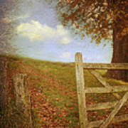 Open Country Gate Art Print