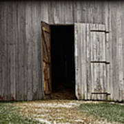 Open Doorways Art Print