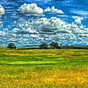 Open Pastures Art Print