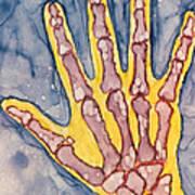 Opposing Thumb Art Print
