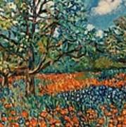 Orange And Blue Flower Field Art Print