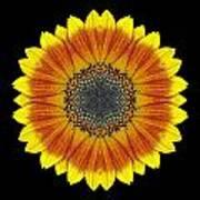 Orange And Yellow Sunflower Flower Mandala Art Print