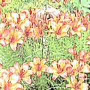 Orange Asiatic Lilies Art Print