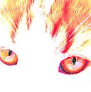 Orange Cat Eyes Art Print
