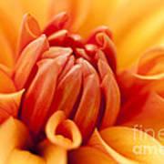 Orange Centre Art Print